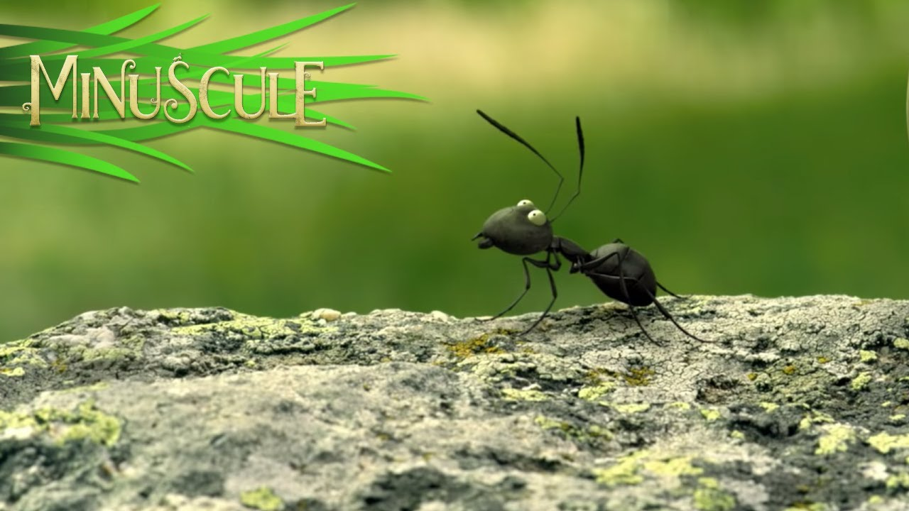 Minuscule Valley of the Lost Ants หุบเขาจิ๋วของเจ้ามด (2013)