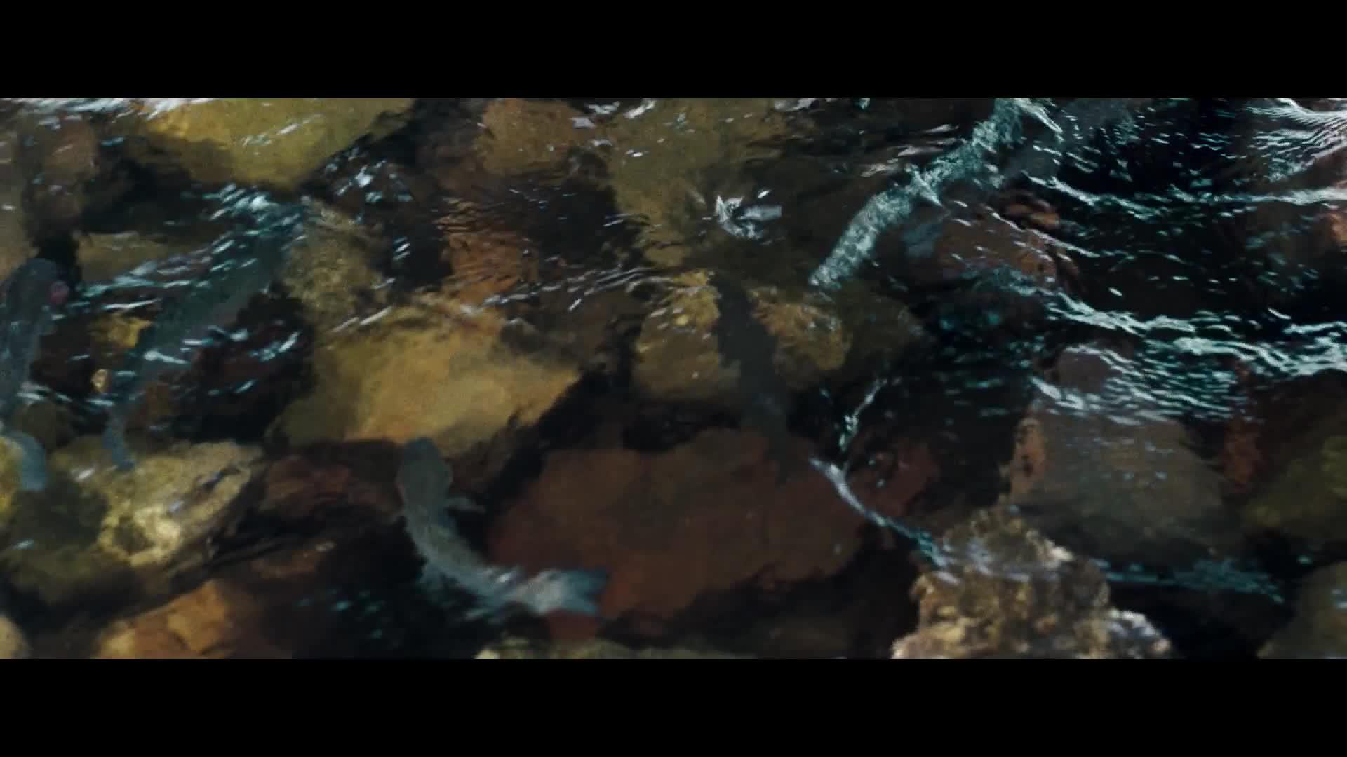The Mummy 3 Tomb Of The Dragon Emperor คืนชีพจักรพรรดิมังกร (2008)