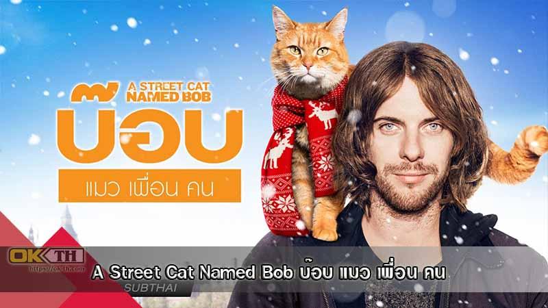 A Street Cat Named Bob บ๊อบ แมว เพื่อน คน (2016)