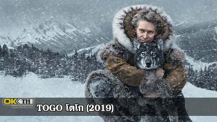 Togo หมาป่า โตโก (2019)